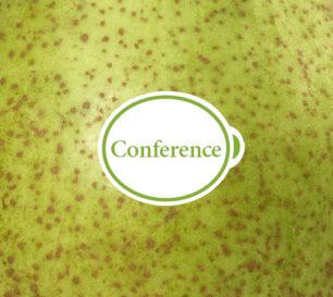 conference_closeup