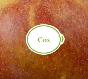 Cox Packshot