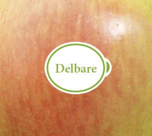 delbare_closeup