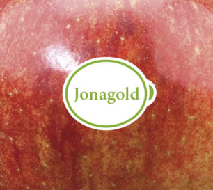 Jonagold packshot closeup