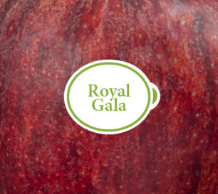 Royal Gala Packshot closeup