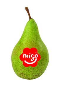 Migo packshot