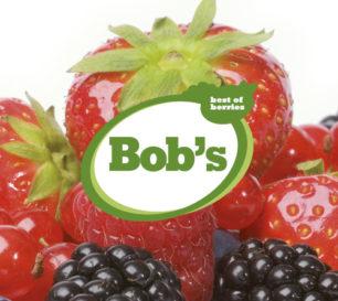 Widget bobs