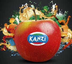 Kanzi widget