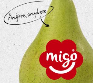 Migo widget
