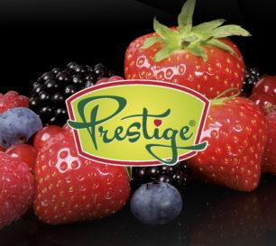 widget Prestige