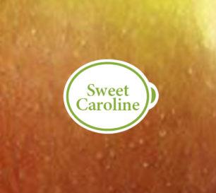 Sweetcaroline_Closeup
