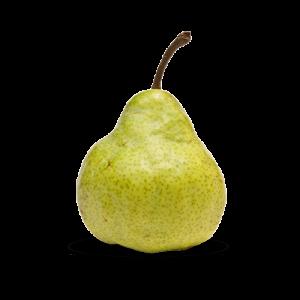 Packham Fruitmasters